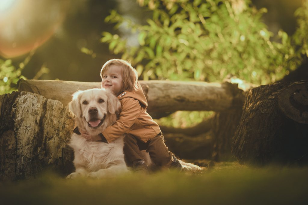 Enfant qui fait un câlin à un Golden Retriever