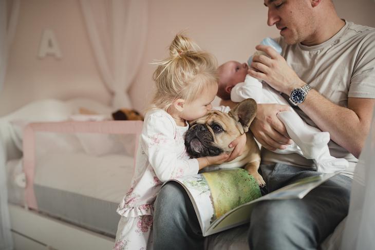 Bouledogue anglais en pleine séance de câlins avec un enfant