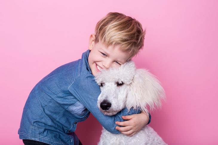 Enfant qui câline un Caniche