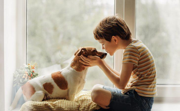 Enfant qui câline un chien