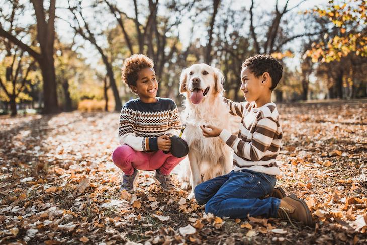 Golden Retriever qui joue avec deux enfants