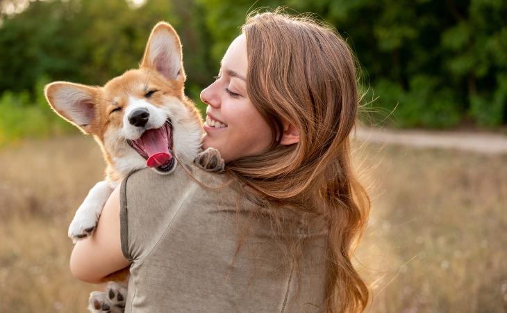 chien éducation positive